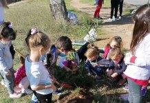 Περιβαλλοντική-δράση!-tα-παιδάκια-του-4ου-Νηπιαγωγείου-Ραφήνας-φύτεψαν-πικροδάφνες-(φωτό)