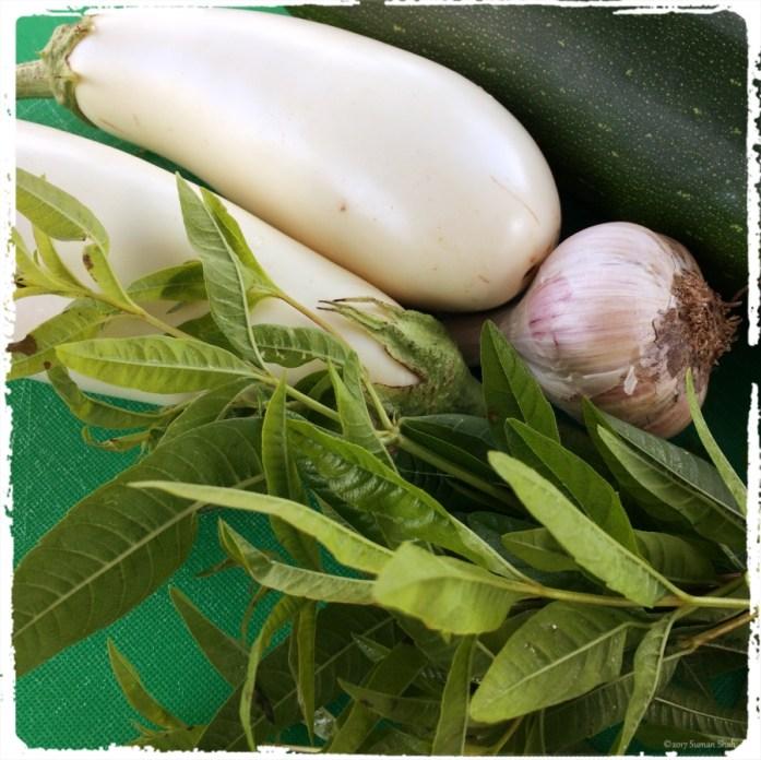 eggplant and zucchini with lemon verbena
