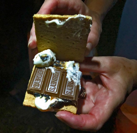 s'mores - a campfire treat open s'more