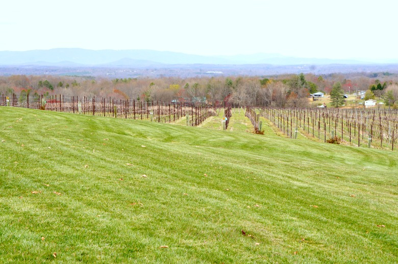 Visiting the Yadkin Valley, NC wine country? Check out this Yadkin Valley Day Trip Itinerary for a perfect day of wine tasting in the Swan Creek Valley region of Yadkin.