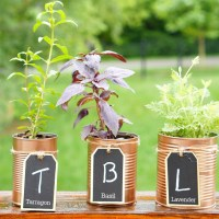 DIY Copper Herb Planters for Your Kitchen