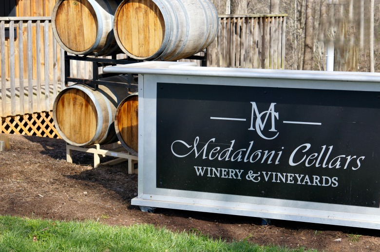 Yadkin Valley wine tasting makes a great day trip from Charlotte, NC.  Here are five North Carolina Vineyards you won't want to miss.
