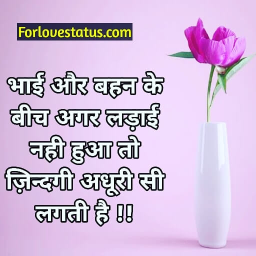 Brother and sister love quotes, Brother And Sister Love Quotes in English, Brother And Sister Love Quotes in Hindi, brother and sister quotes, brother and sister quotes images, Brother and sister relationship quotes with images, Brother and sister shayari in hindi, brother and sister status in Hindi, brother sister quotes, Brother to little sister quotes, Brother To Sister Quotes in Hindi With Image Download