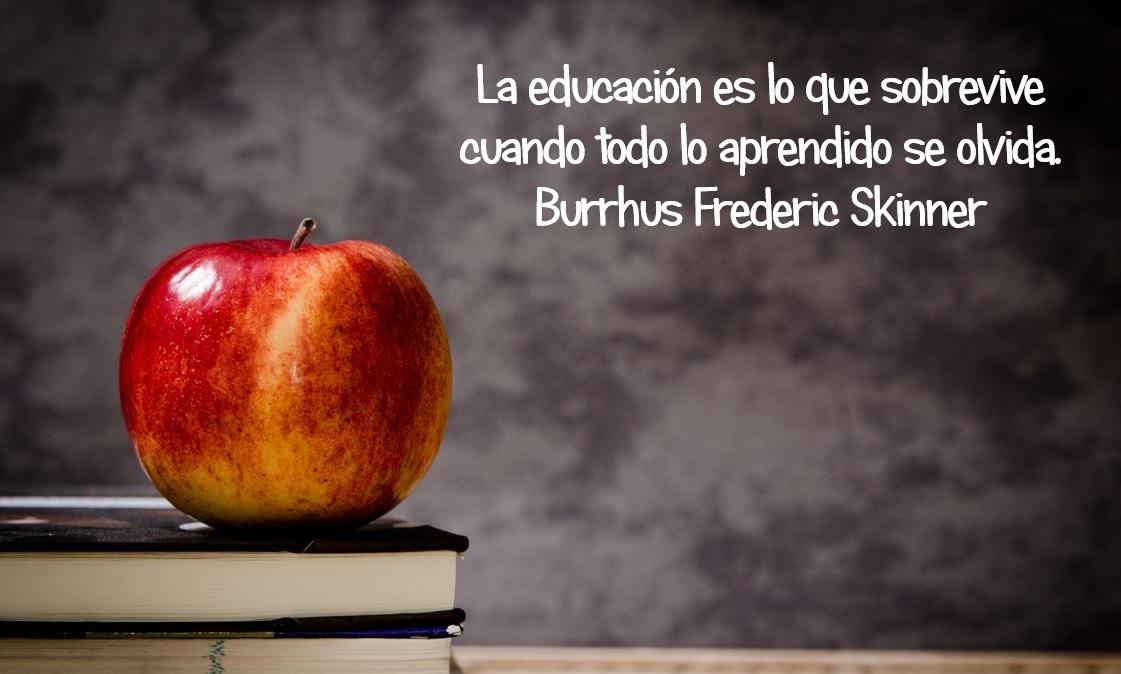 https://i1.wp.com/formacion.ginerymira.com/wp-content/uploads/2014/12/frases-sobre-educacion-11.jpg