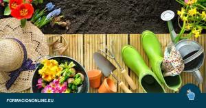 Los 10 Mejores Cursos Gratis de Jardinería