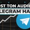 audience-telegram
