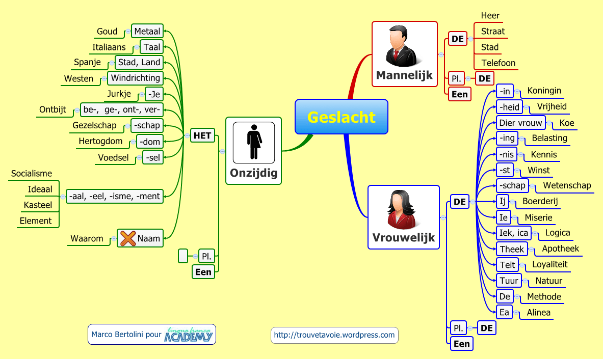 Mindmap de grammaire néerlandaise : les trois genres masculin, féminin et neutre