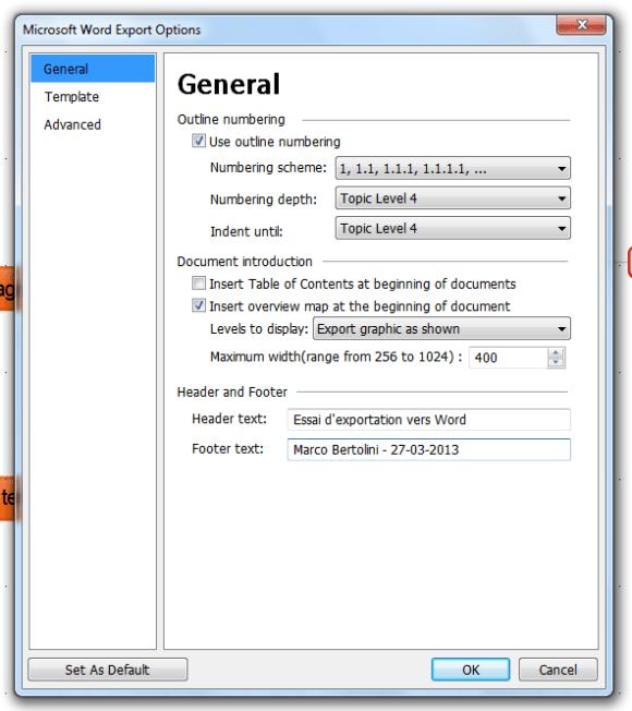 fenêtre de dialogue affichant les options générale de l'exportation vers un fichier Word depuis MindMaple