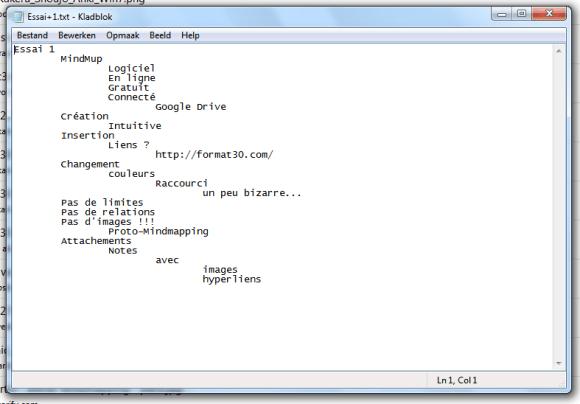 Capture d'écran de ma carte exportée au format TXT dans le bloc-note Windows