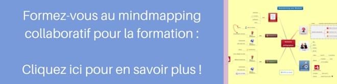 Avec notre spoc, formez-vous au mindmapping collaboratif pour formateurs, coachs et enseignants