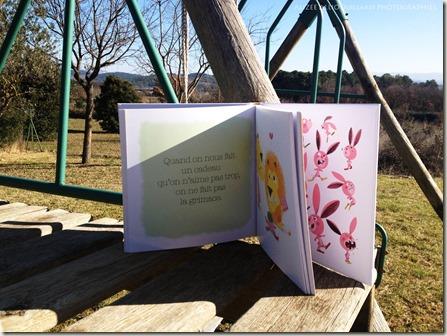 le dictionnaire des bonnes manières Larousse Jeunesse Savoir vivre et politesse (2)