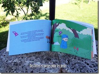 Alex et Kiyu a la recherche des lettres disparues livre jeunesse (1) copie