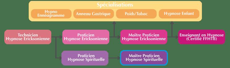 Organigramme Maitre Praticien Hypnose Spirituelle