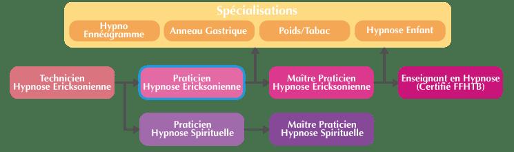 Organigramme Praticien Hypnose Ericksonienne