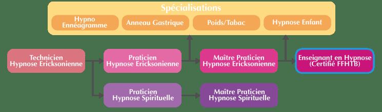 Organigramme Enseignant Hypnose Ericksonienne