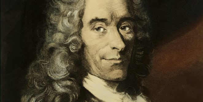 Qu'est-ce que le projet Voltaire ? | Explications