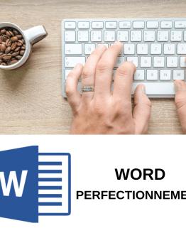 Découvrir la formation wordpress perfectionnement sur formation.leszbres nomades