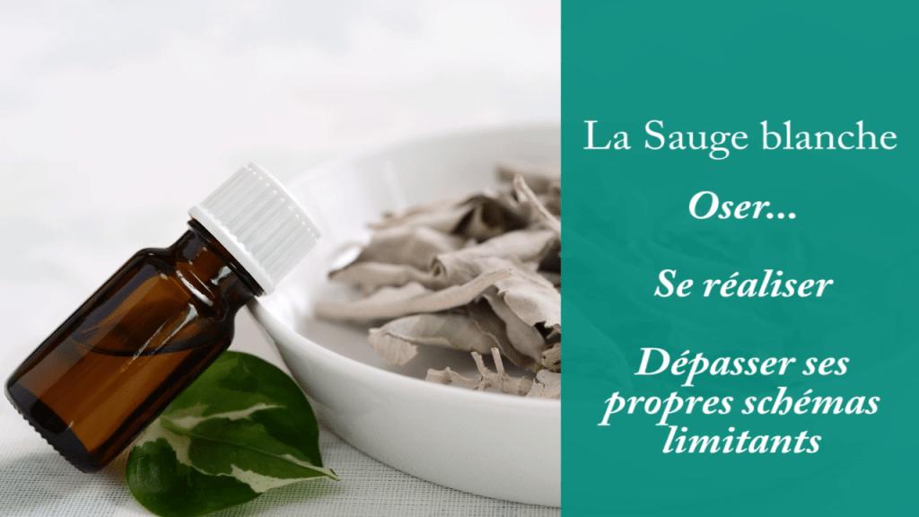 huile essentielles de sauge blanche