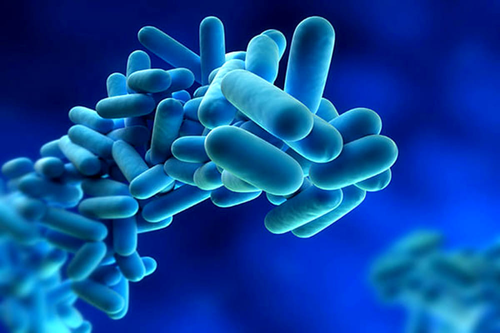 Legionella: risks and prevention