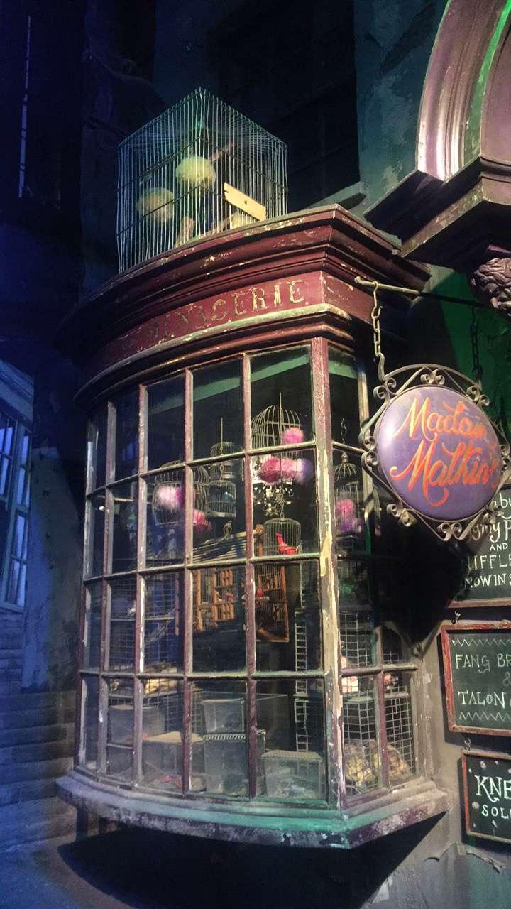 Formidable Joy | UK Fashion, Beauty & Lifestyle Blog | Lifestyle | Kew Little Pigs & Warner Bros. Studio Tour | Kew Little Pigs | Warner Bros. Studio Tour | Teacup Pigs | Piglets | Harry Potter | Harry Potter Studios