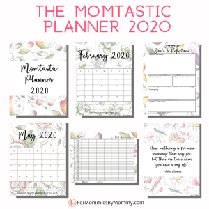 momtastic planner 2020 best planner for moms