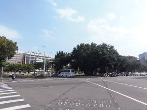 Street trees near East Gate Town, Taipei.