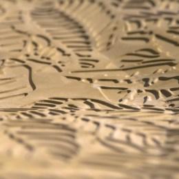 Nest_Detail_1