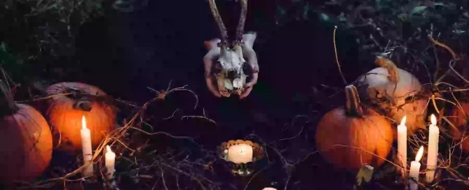 image of woman surrounded by pumpkins and candles, holding a skull