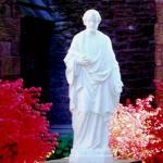 20 Devociones para Honrar a San José