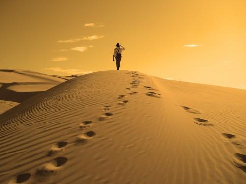 caminante desierto