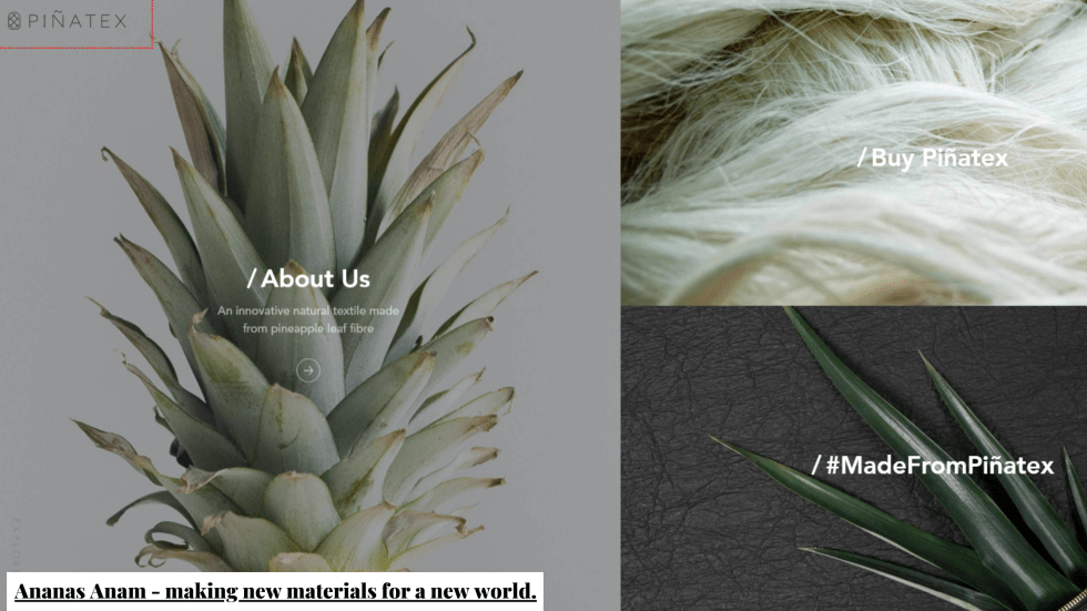 Screen capture of Ananas Anam, who make new materials for a new world