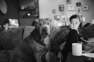 Wilson dog newborn photography lifestyle forrest and fox
