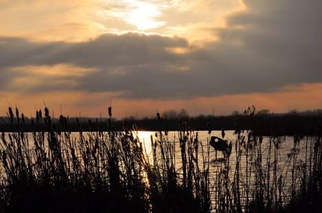 sunset at EM Mark Bruhn
