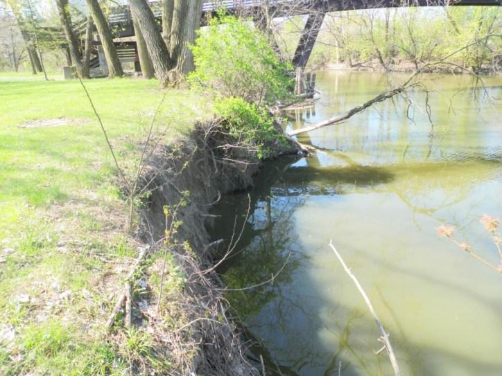 riverbank erosion 1