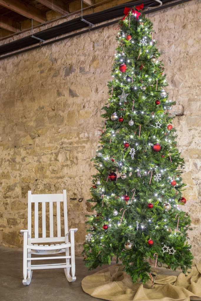 4x6 Christmas tree