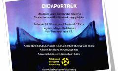 Mészáros Laura - Cicaportrék