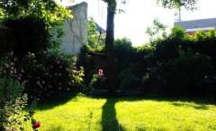 Szalay Ákos - Örök kert