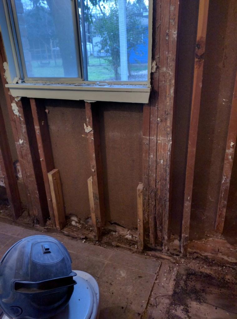 bathroom remodel termite damage