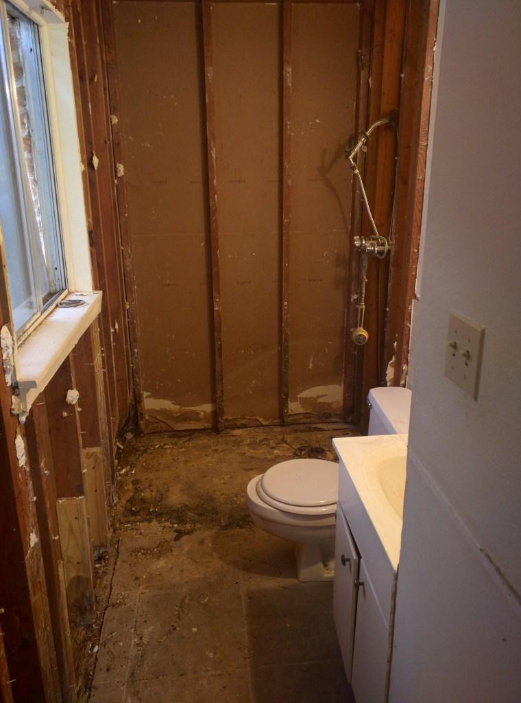 bathroom renovation - demolition