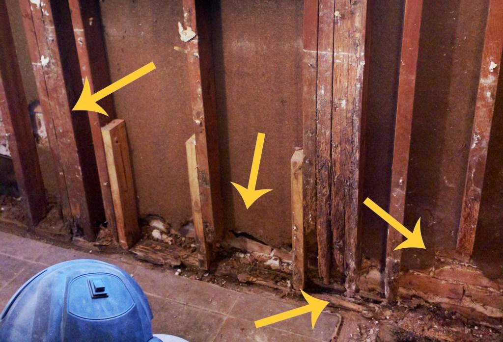 termite damage in bathroom