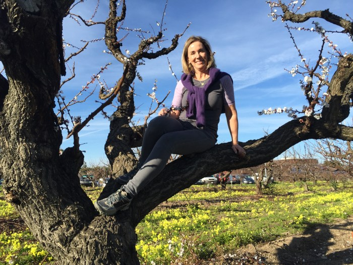 Lisa perched in apricot tree