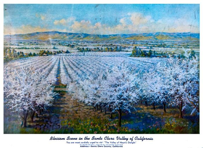 "Blossom scene in ""The Valley of Heart's Delight"""