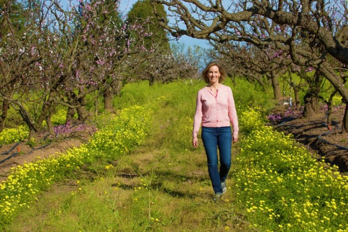 An orchard stroll