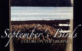 September's Birds - Colors On The Ground