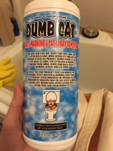 Dumb Cat - Urine Removing enzyme cleaner