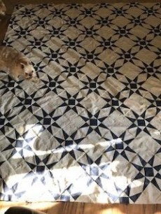 blue and white star quilt