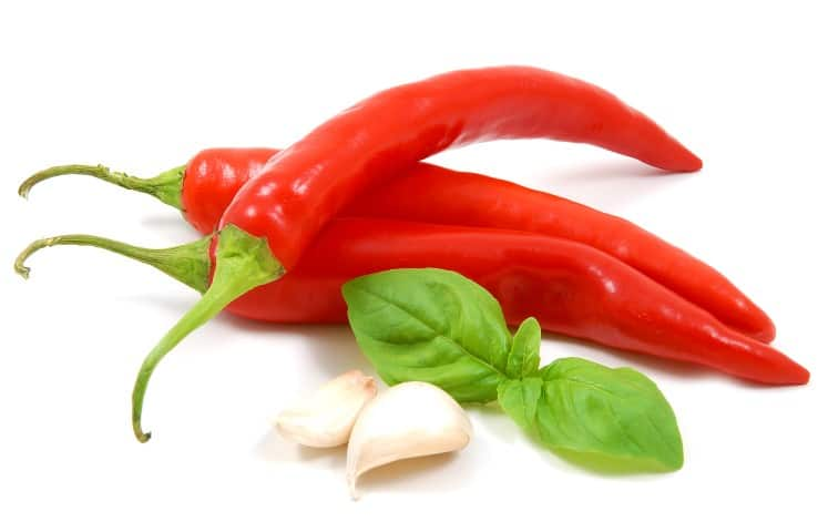 Red chilli and garlic