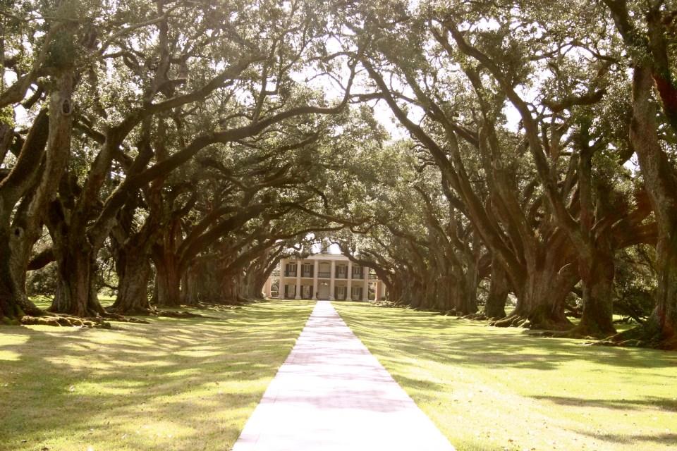 The Oak Alley Plantation
