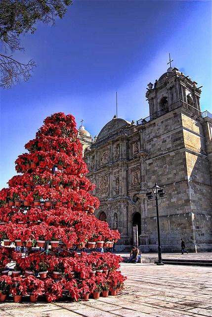 XMexico