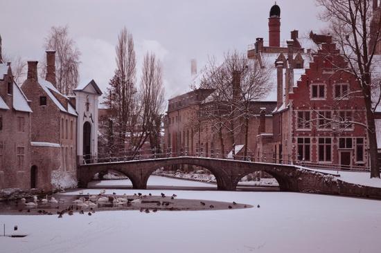 Snow Bruges